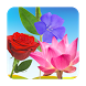 Flowers Learning Flashcards by Walter Technologies
