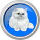 Funny meow kittens by Phoenixxx Games prod.