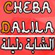 Cheba Dalila الشابة دليلة by devv-one