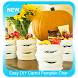 Easy DIY Carrot Pumpkin Characters by Immortality