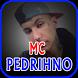 Mc Pedrinho Musica Letras by Mei Std