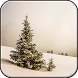 Winter Wallpapers HD (backgrounds & themes) by Ahepton