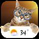 Cat weather widget wallpaper by Weather Widget Theme Dev Team