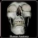 Human Anatomy (Spotting) by Black Droid Inc.