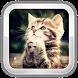 Cat Games by TexTalk
