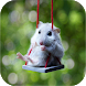 Hamster Wallpapers by Zexica Apps