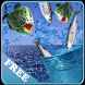 Fish Jumping by Darie Productions
