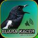 Kacer Gacor Masteran by Gakure Developer
