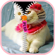 Zipper Screen Lock Kitty Cat by Flag Wallpaper HD HQ Free for mobile