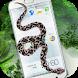 Snake on my smartphone by Samzord Studio