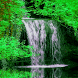 Wild Waterfall Live Wallpaper by Daksh Apps