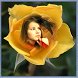 Sunflower Photo Frame by Photo Collage Editor Apps