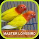 Masteran LoveBird Ngekek by Adnani lab