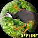 Suara Burung Wak Wak Pikat MP3 by KingKustur Dev