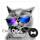 Stylish Wallpaper Cool Cat x Galaxy Theme by +HOME by Ateam