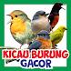 Kicau Burung Gacor : Koleksi Suara Burung Lengkap by ArfanDev