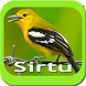 SIRTU KICAU by rezpectordev