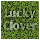 Find Lucky Clover by SHOONG