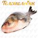 Толстолобик by fishermanyou