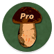 Book of Mushrooms PRO by headcorp