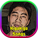 Nigahiga Songs