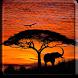 Elephants Video Wallpaper by JimmyTummy