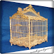 Design Bird Cages Chirping by wahyutyass