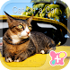 Cute Theme-Cat on a Car- by +HOME by Ateam