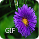 Flower GIF Collection by iKrish Labs