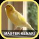 Masteran Kenari Juara by Adnani lab