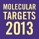 Targets 2013 by (AMMO) Amphetamobile, LLC