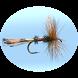Fly Fishing Simulator by Pishtech LLC