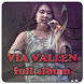 Lagu Dangdut Koplo Via Vallen MP3 by Qiboldev