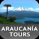 Araucanía Tours by TIDE S.A.