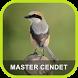 Masteran Cendet Juara Gacor by Adnani lab