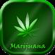 Marijuana HD Wallpapers by Zinga Apps