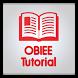 Learn OBIEE