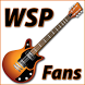 Widespread Panic Fans by DSWorks, LLC