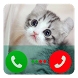 Kitty Cat Fake Call by BokulPrank