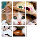 Kids Cat Slide Puzzle by VirtualStyle
