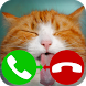 fake call cat 2 by NetApps