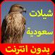 شيلات سعودية بدون انترنت by Tpappoz