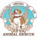 Angels Among Us Animal Rescue