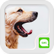 IVY SMS Doggy Wallpaper by TheMe Studio