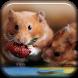 Cute Animal Eating LWP by Marik Widget