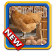 Virtual Chicken by Garbage Software
