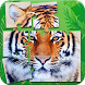 Tigers Jigsaw Puzzle Game by Puzzles and MatchUp Games