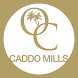 Oasis Church Caddo Mills by FaithConnector Church Websites