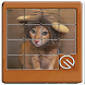 cute cat phots slide puzzle game by Rackamtof