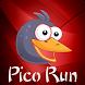 Pico Run Adventure Diamond